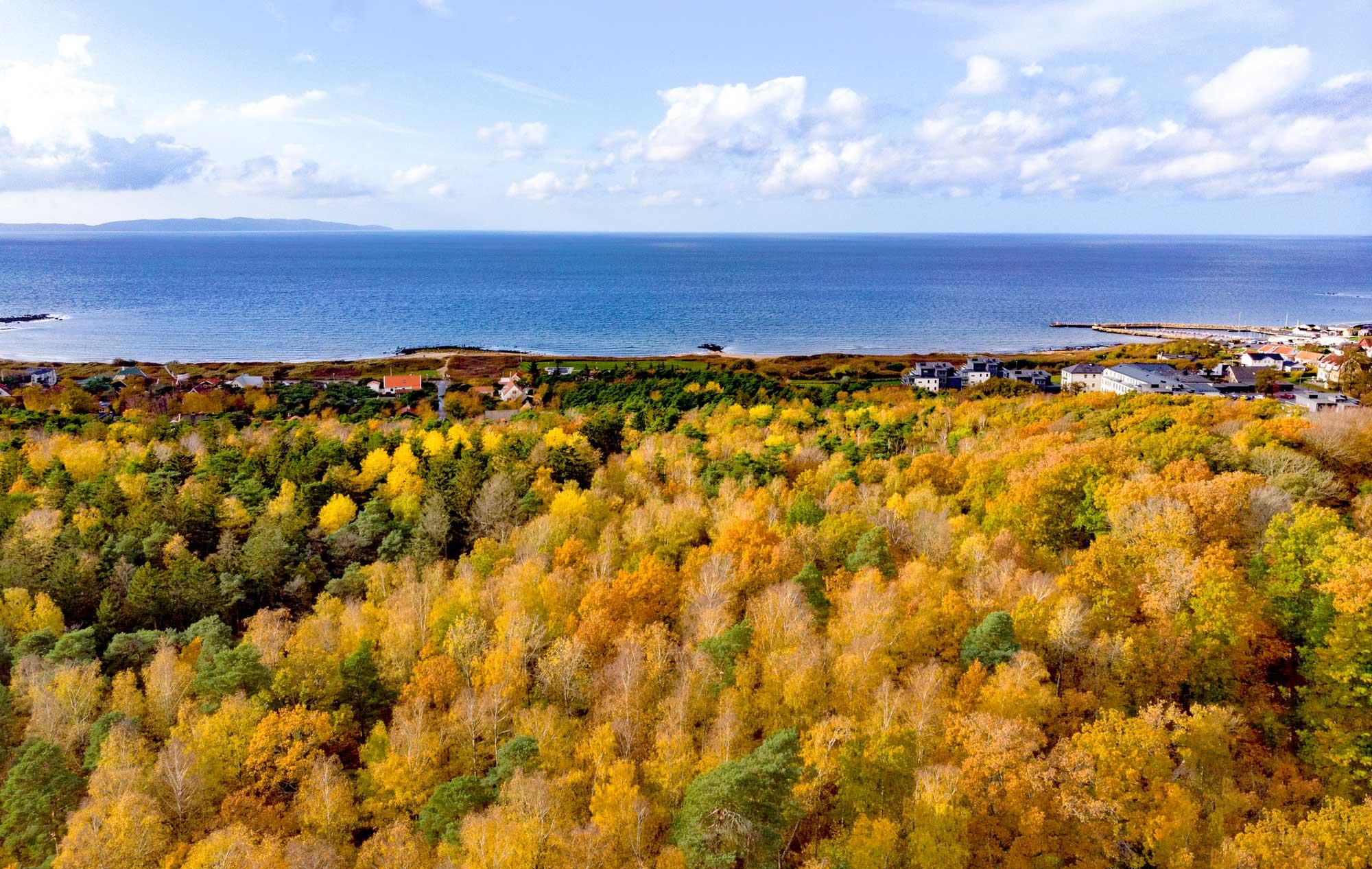 Autumn in Vejbystrand
