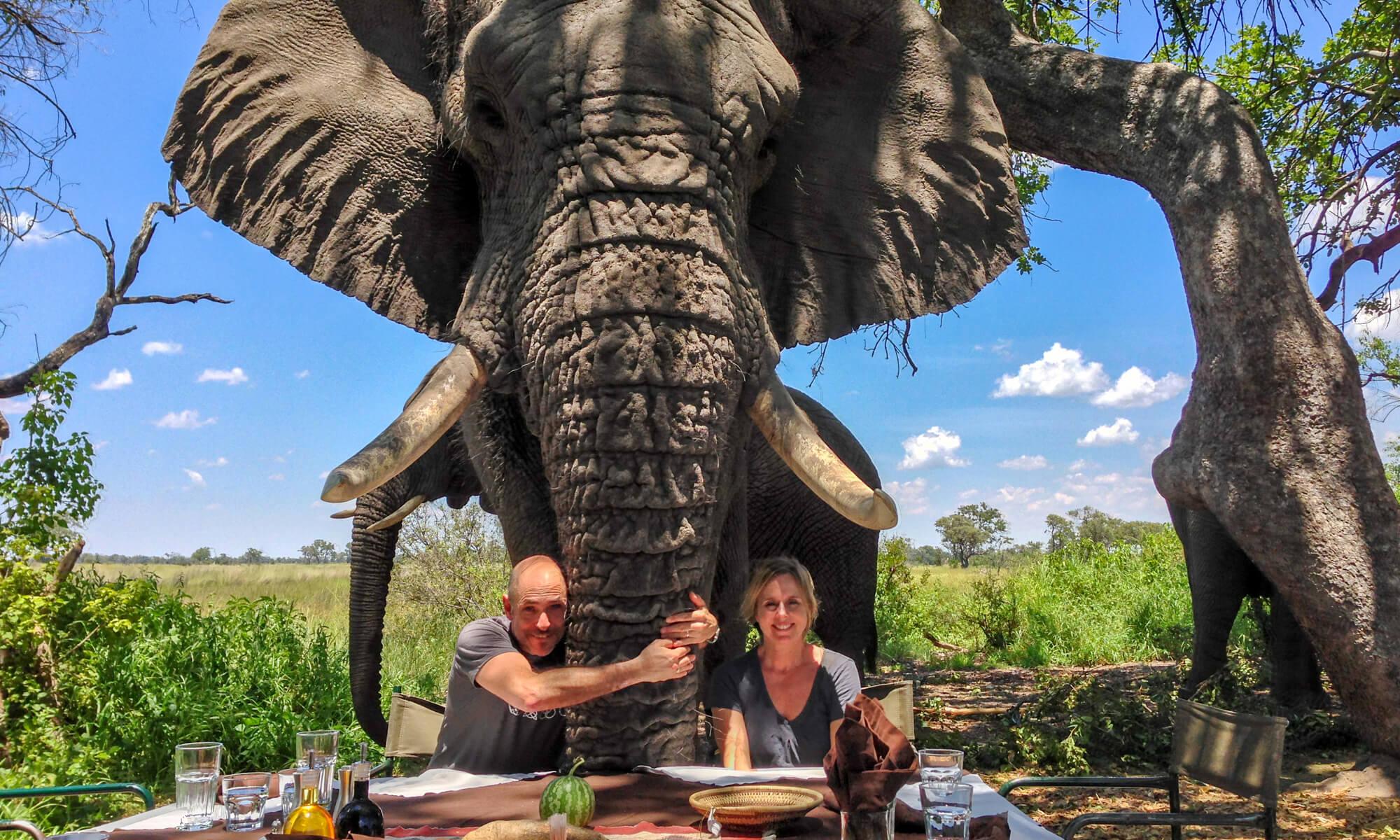 Elephant Hug Botswana